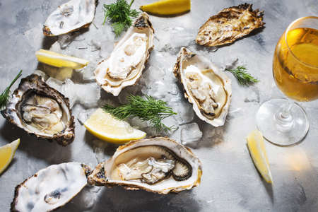 Opened Oysters and glass of white wine on gray concrete texture background.
