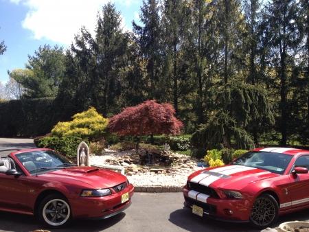 mustang gt: 2003 Mustang GT  2013 Shelby GT500