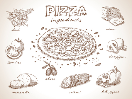 pizza ingredients: Pizza with ingredients free hand drawing, sketch style Illustration