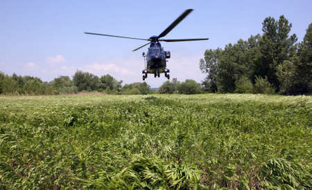 sways: Helicopter lands on the grass that sways