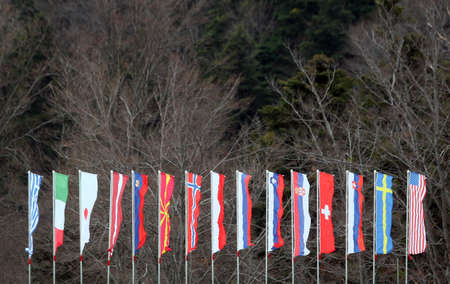 International flags in front of forest