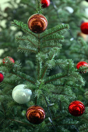 holyday: Red and white balls on the Christmas tree