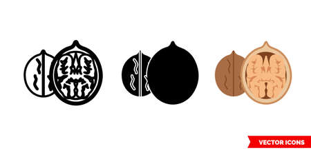 Walnut icon of 3 types. Isolated vector sign symbol.