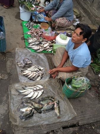 fish: Fish market in Inle lake, Myanmar