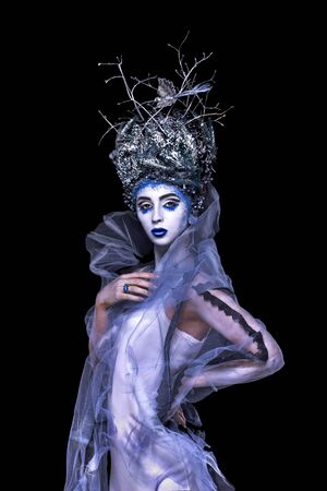 Ice-queen. Winter woman. Young woman  with silver blue creative  artistic fantasy make-up, fantasy dress with brances in head and bird on it. Stock Photo