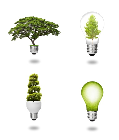 future eco energy saving concept collection, green tree and leaf growing with light bulb isolated photo