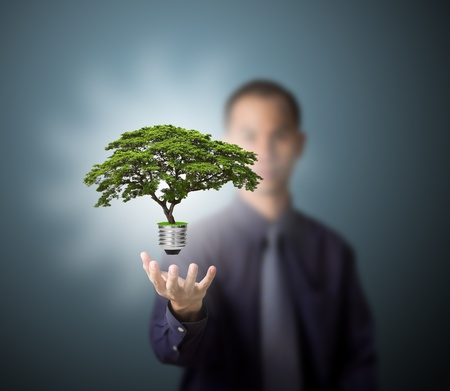 green economy: future eco - green energy concept, light bulb of tree in man hand Stock Photo