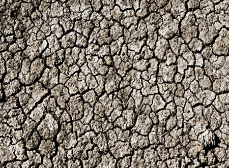 cracked dry soil texture photo