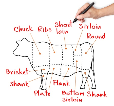 beef meat: hand drawing cow and cut of beef or beef chart Stock Photo