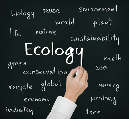 business hand writing ecology concept photo