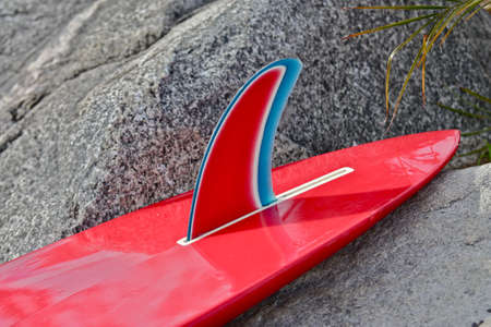 surfboard fin: Red and blue winged, pintail surfboard