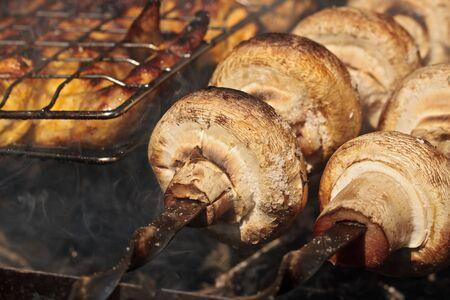 agaricus: Cooking mushroom barbecue (Shampignons, Agaricus bisporus)