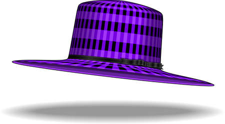 isolated purple hat illustration