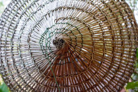 Bamboo fish trap photo