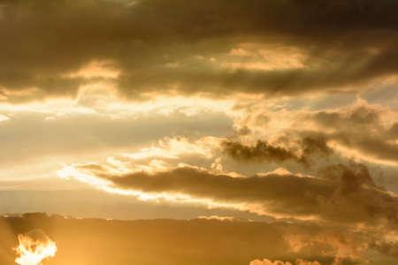 animal kite: The sky at sunset