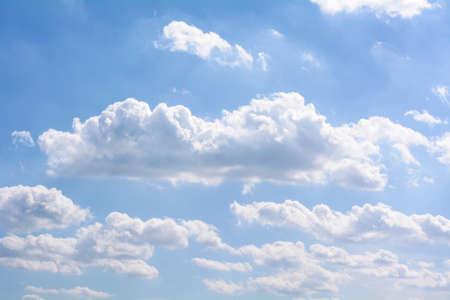 animal kite: Blue cloudy sky. Stock Photo