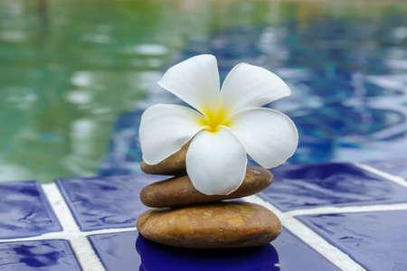 Des fleurs de plumeria sur un sol carrelé se trouvaient à côté de la piscine.