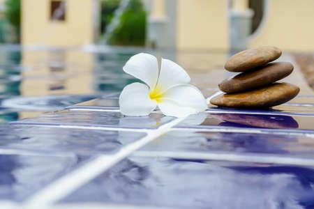 Des fleurs de plumeria sur un sol carrelé se trouvaient à côté de la piscine. Banque d'images