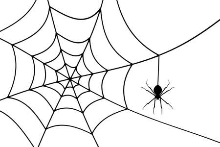 Halloween Concept background with a spider are making webs.