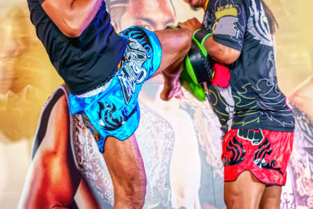 The lure of thai boxing training target.