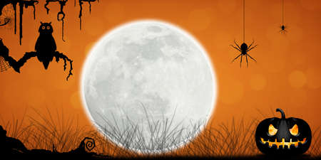 Halloween Concept with moon, tree, owl, spiders and pumpkins in Fantasy Night.