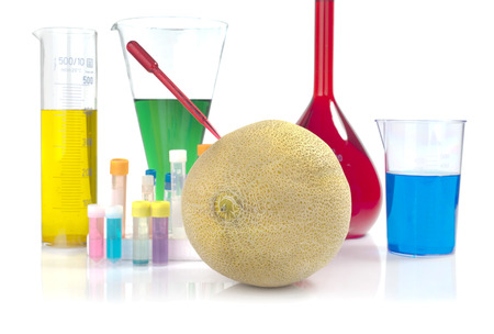 Genetically modified organism - melon and laboratory glassware on white background photo