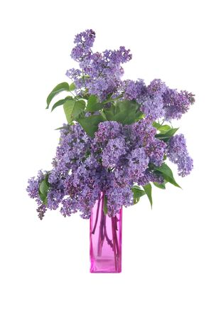 Bouquet of lilac in a vase isolated on a white background photo
