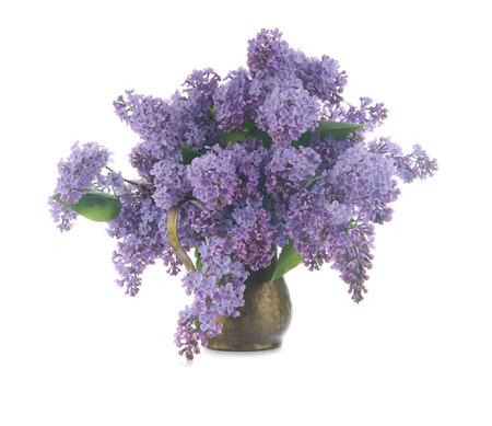 Bouquet of lilac in a copper jug,  isolated on a white background photo
