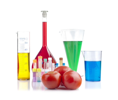 genetically modified organism: Genetically modified organism - ripe tomatoes and laboratory glassware on white background Stock Photo