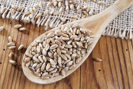 wheat grains in wooden spoon photo