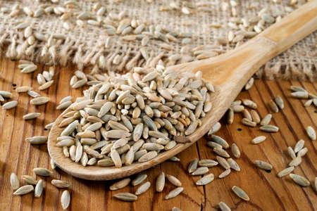rye grains in wooden spoon photo