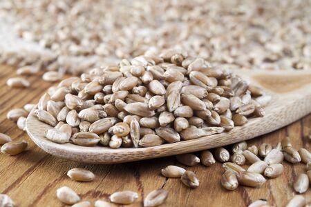 tat: wheat grains in wooden spoon
