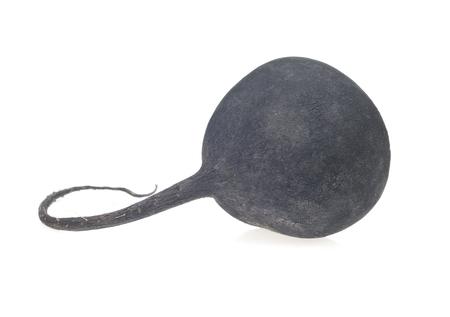 rutabaga: Black Radish, turnip, isolated on white