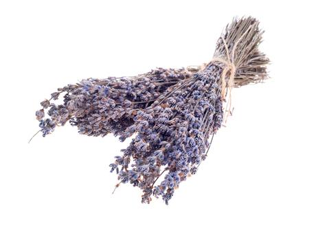 dry lavender bunch isolated on white background Standard-Bild