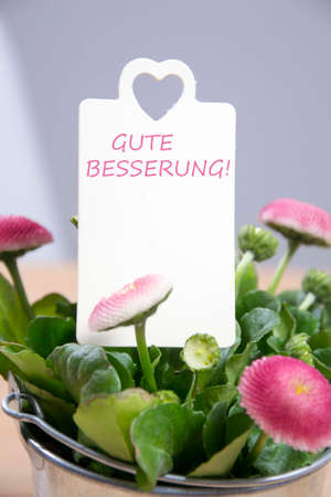 centering: greetings with flowers