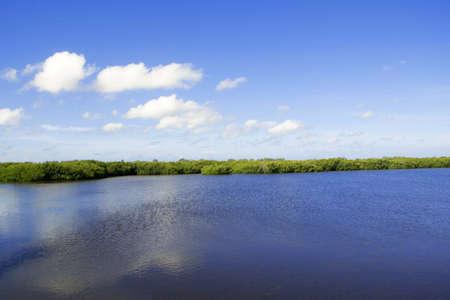 wetland conservation: ring darling wildlife refuge