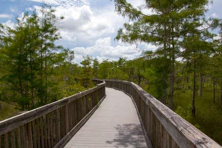 everglades: Everglades Florida