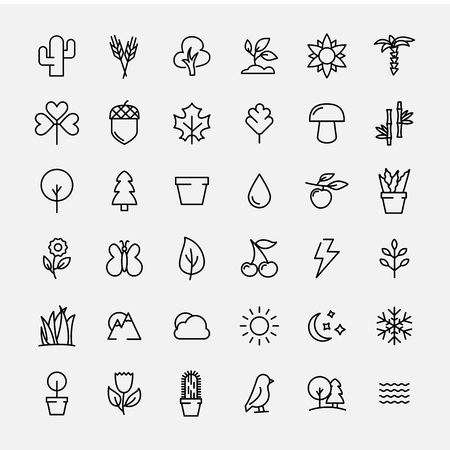 pine apple: Set of nature icons in modern thin line style. High quality black outline leaves and trees symbols for web site design and mobile apps. Simple linear nature pictograms on a white background.