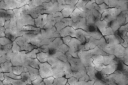 Solid texture of a cracked soil