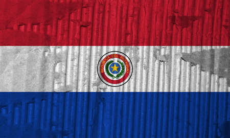the americas: Flag of Paraguay
