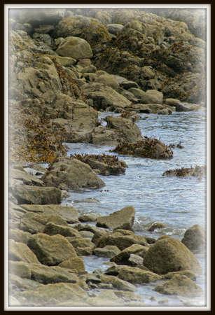 Bowen Island Seascape 版權商用圖片