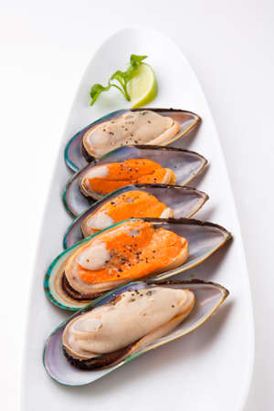 new zeland: New Zeland Greenshell Mussel Stock Photo