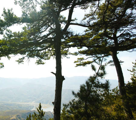 nature scenery: Nature scenery view from Heng Mountain  Stock Photo