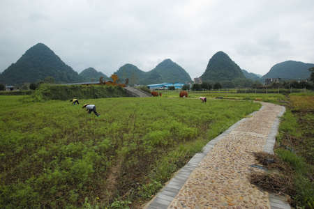 Farmland landscape in Yangshuo Stock Photo