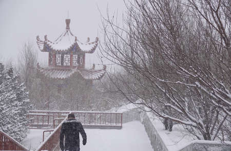snowfall at Inner Mongolia Stock Photo