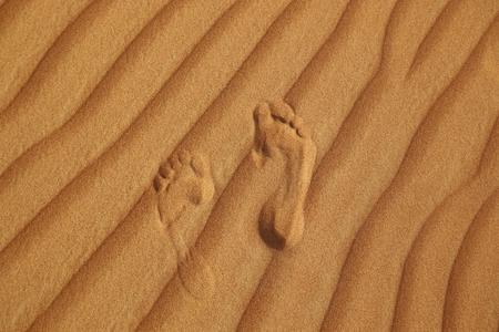 desert footprint: footprint on sand of desert near Dubai