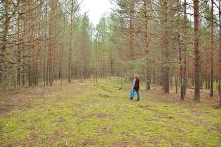 mushrooming: Mushrooming, woman picking mushrooms in the forest