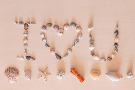 i love u: I lOVE U words by sea shell on light wooden background Stock Photo