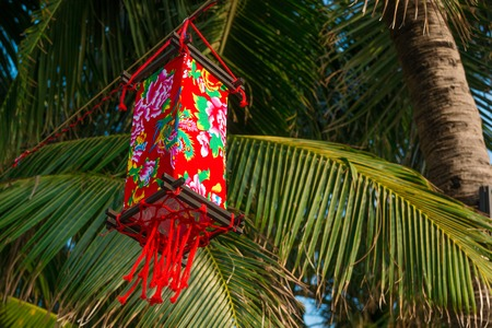 Red chinese lantern in the outdoor on green palm tree background Foto de archivo