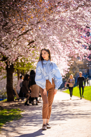 Beautiful young asian woman in blooming cherry blossoms garden in Prague Foto de archivo - 121435728